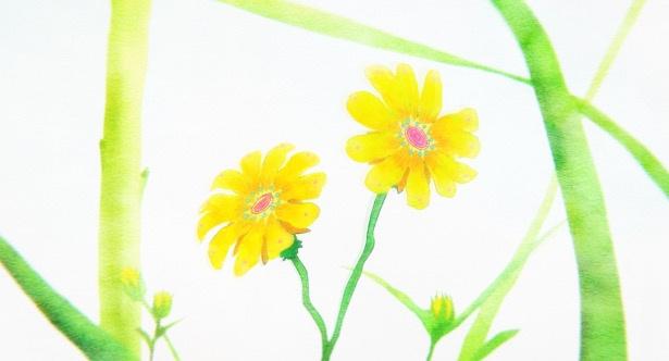 映画「聲の形」のスタッフが贈る最新作!「リズと青い鳥」の最新情報が解禁!