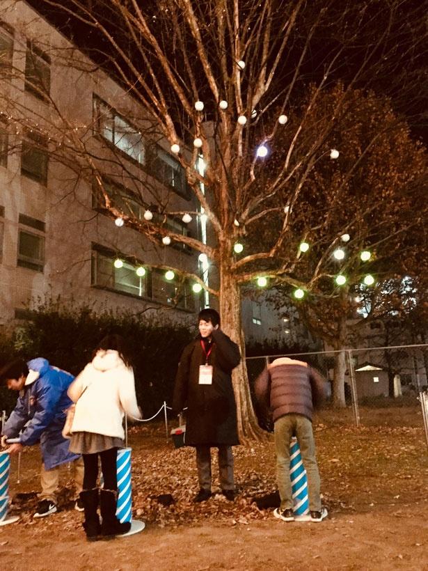 名倉公園で実施される土日祝イベント「サーカス団のカラフルツリー」。ロームのテクノロジーを感じながら楽しめる、体験型イルミネーション