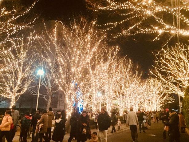 名倉公園前は車両通行止めになっていた。日曜の18:00ごろとあり、子供連れのファミリー層が目立つ