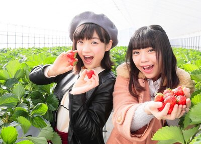 SKE48研究生の仲村和泉(右)と坂本真凛(左)が、三重県屈指の人気農園をレポート!