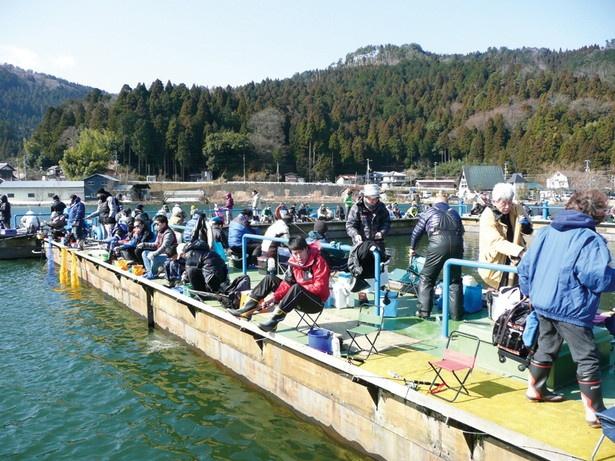 美しい湖面を眺めながら桟橋で釣りを満喫!「余呉湖」(滋賀県長浜市)
