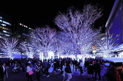 博多駅前広場の街路樹も青い光で彩られ、あたりをやさしく照らす
