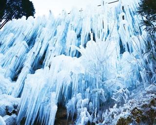 遠くからでも圧倒される!愛知県唯一の氷瀑/湧水広場の氷瀑