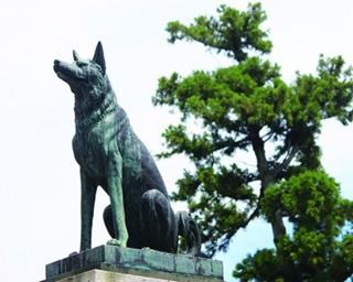 犬の王伝説がある「伊奴神社」(名古屋市西区)