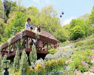 日本最大級のハーブ園で 花の香りをたっぷり満喫