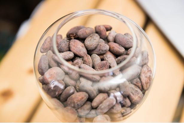 店内に展示されている原材料のカカオ豆