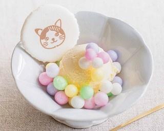和風ポップで可愛い!猫好きさん仕様のおめでたいお菓子