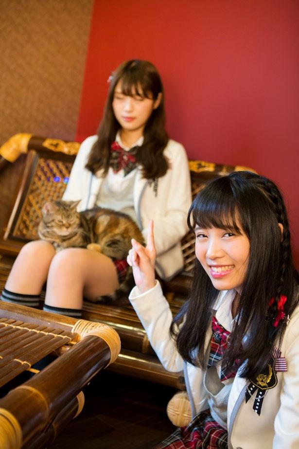 """(なぎちゃん)「猫ちゃんが隣にいると眠くなるのを、渋谷家では""""眠り病""""って呼んでて、さっきもちょっと寝ちゃいました(笑)」/猫cafe ぐるぐる堂"""