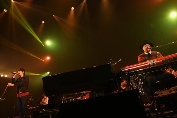 「COUNTDOWN JAPAN 17/18」初日に出演したスキマスイッチ