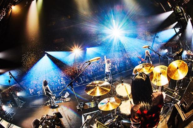 再集結から2年間の集大成となる福岡でのライブ