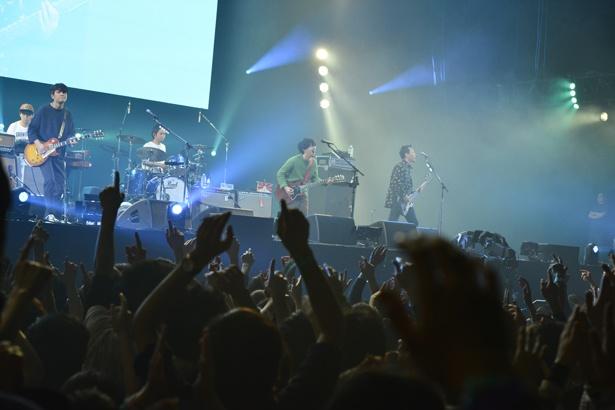 ASIAN KUNG-FU GENERATIONの演奏に盛り上がる観客