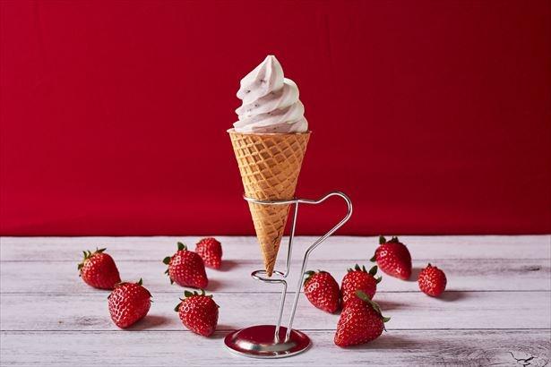 濃厚なミルクアイスと苺アイスの2色巻きのアイス「Uchi café SWEETS 苺&ミルクワッフルコーン」