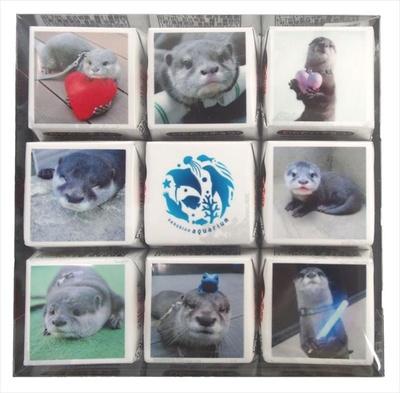 ショップ アクアポケットの「サンシャイン水族館オリジナルチロルチョコセット」(853円)