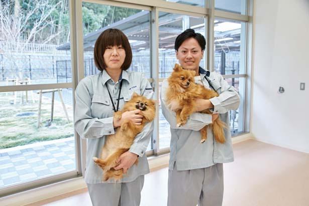 「ちょろまる」(左)と「ししまる」(右)/大阪府動物愛護管理センター