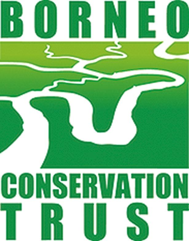 ボルネオの環境保全に取り組み、産地の環境にも配慮する/ヤシノミ洗剤