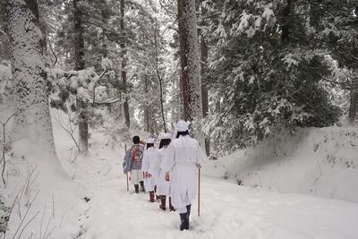 「継子坂」は長い石段の坂だが、雪で何も見えず…