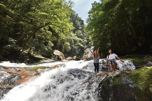 名瀑を背景になめらかな岩場の流れで水に親しめる。深緑の森に囲まれ、水しぶきがひんやりと気持ちいい