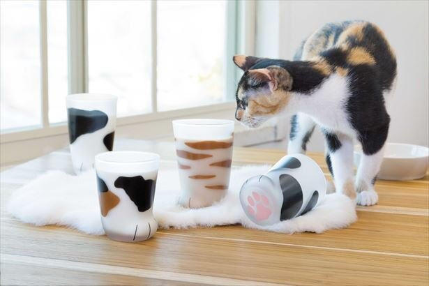 猫の手足をイメージしたグラスがヴィレヴァンオンラインに登場