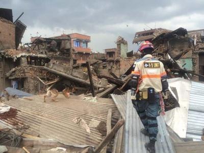 2015年のネパール地震で捜索中のエイトちゃん/日本レスキュー協会