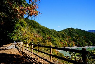 YUTAのお気に入り「井川湖畔遊歩道(廃線小路)」
