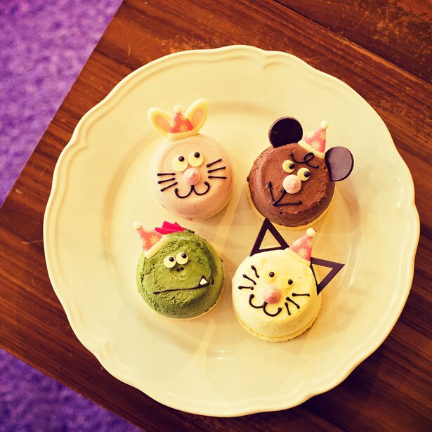 4種類のどうぶつケーキはなんばCITY店限定