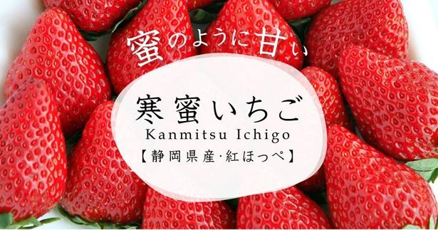 静岡県産のイチゴ・紅ほっぺを極限まで完熟させた「寒蜜いちご」