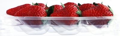 【写真を見る】特別な配送容器「ゆりかーご」がイチゴを優しく包んでくれる