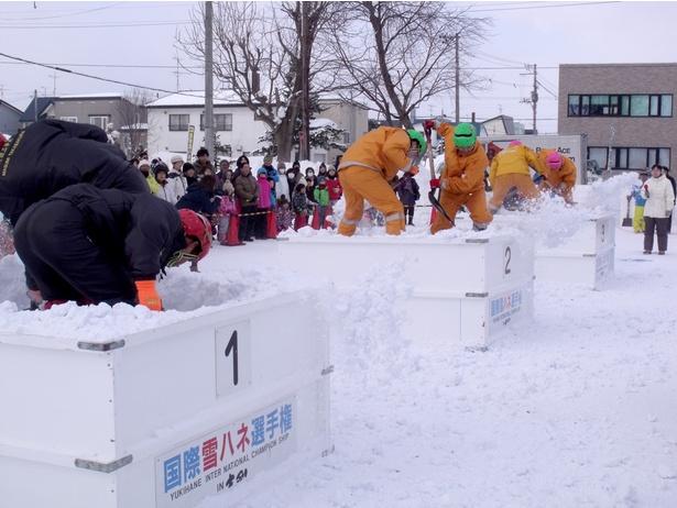 「国際雪ハネ選手権」は180cm四方、深さ約1mの箱に詰まった雪をスコップでかき出し、底に埋められた旗を掘り起こしてゴールへ持って行くユニークな競技