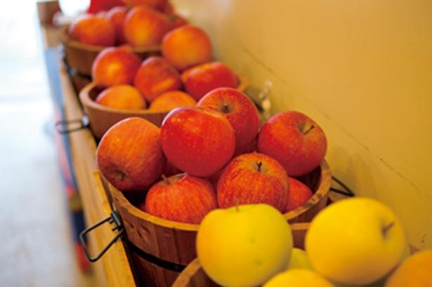 店内はリンゴの甘い香りでいっぱい。リンゴのみの購入もOK/elicafe