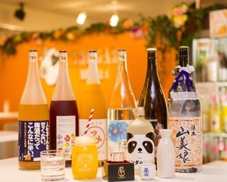 梅酒・果実酒、日本酒、焼酎全300種類が3,240円で飲み放題の新スタイル!「横浜飲み比べ横丁」とは?