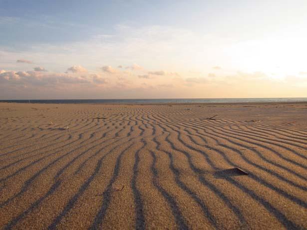 自然が描く風紋は、繊細な砂のアートだ/中田島砂丘