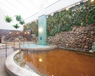 「横浜天然温泉 SPA EAS」では、かけ流しの温泉と低温の温泉、高濃度炭酸泉の3種の浴槽が並ぶ、南国リゾート風の露天風呂が駅近で楽しめる