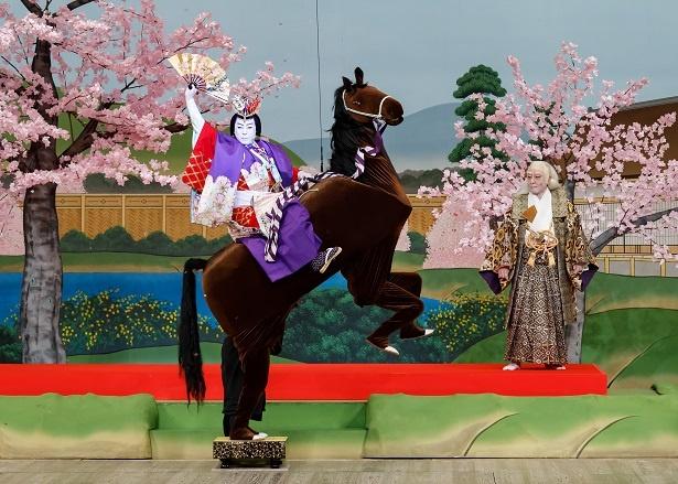 【写真を見る】小栗判官兼氏を演じる尾上菊之助の曲馬乗りに注目!