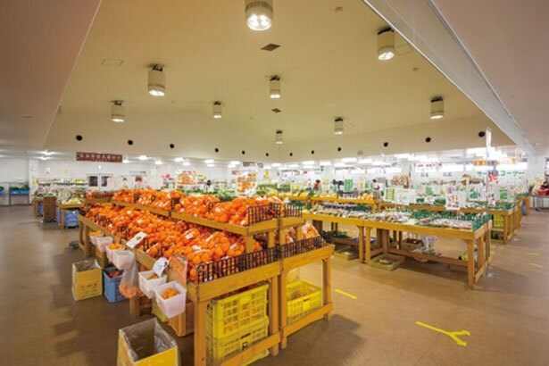 約500坪もの広さを誇る、農産物直売所/道の駅 愛彩ランド