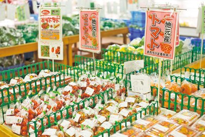 泉州のブランド野菜も手ごろな価格で提供/道の駅 愛彩ランド