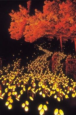 十六羅漢。真っ赤なモミジと、天の川のような灯籠の輝きが幻想的