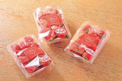 【写真を見る】収穫できるイチゴはあすかルビー、とちおとめ、あきひめの3種類/道の駅 針テラス