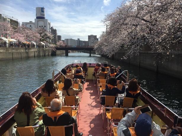 川にかかる13の橋をくぐりながら、オープンデッキの小型船で巡る。枝が川にせり出し、迫力満点!
