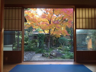 茶室「嚶鳴庵」から見る和風庭園/東海市しあわせ村