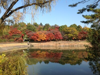 公園のシンボルともいえる「ヤカン池」/東海市しあわせ村