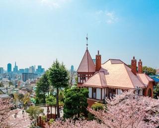 異人館街の中にある神社「北野天満神社」から春の北野エリアを一望できる