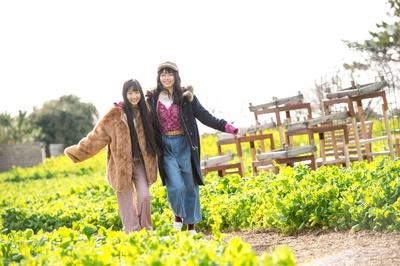 【写真を見る】一面黄色の菜の花が咲くなかを仲良く寄り添って歩く2人