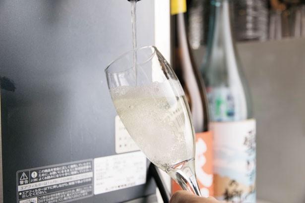 【写真を見る】関西で唯一!希少な酒は生樽から注ぐ/大衆酒場カミヤ