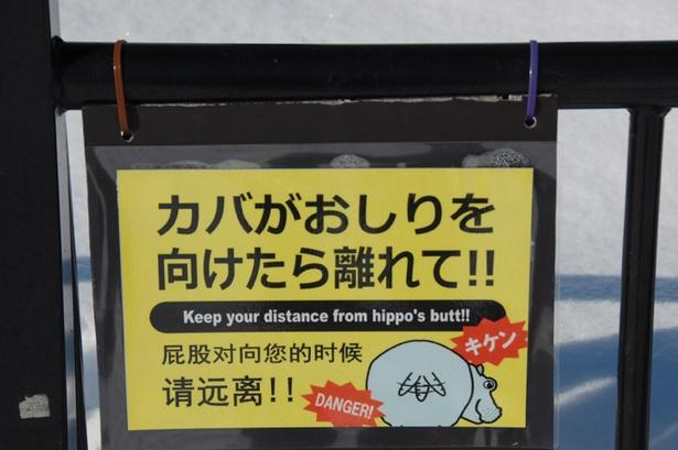 旭山動物園/カバの放飼場には多言語で書かれた注意看板も