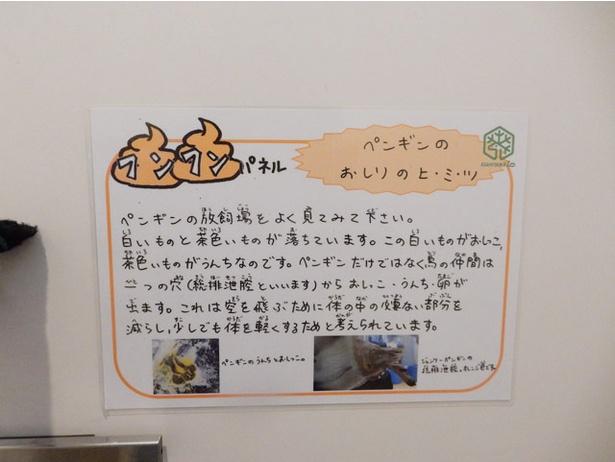 旭山動物園/トイレのドアに貼られた「フンフンパネル」