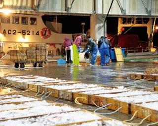 三河湾の魚介類と希少な深海魚を水揚げ!レアな魚介を食べるなら、愛知県・形原漁港