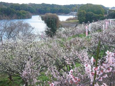 季節や天気を問わず楽しめる施設が充実している「佐布里緑と花のふれあい公園」