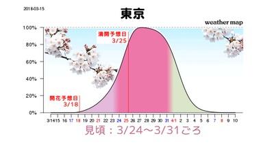 東京の見頃は3月24日(土)から3月31日(土)、満開になるのは3月25日(日)頃