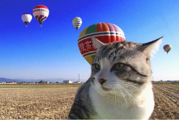 佐賀県のインターナショナルバルーンフェスタにて