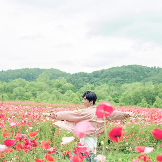 千葉雄大写真集『横顔』